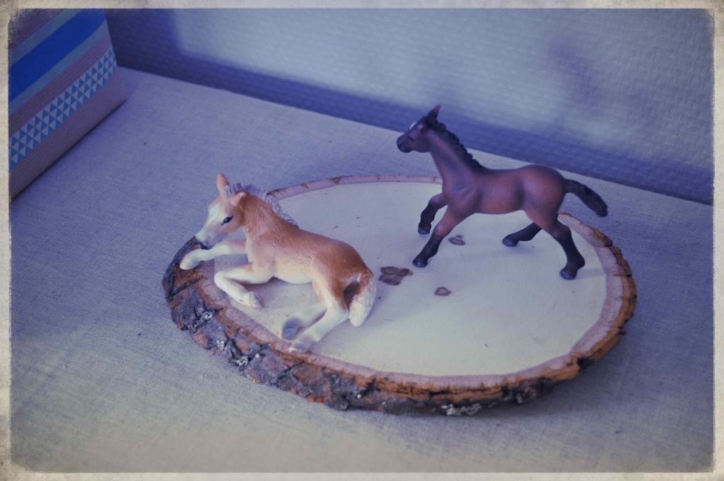 anniversaire chevaux indiens