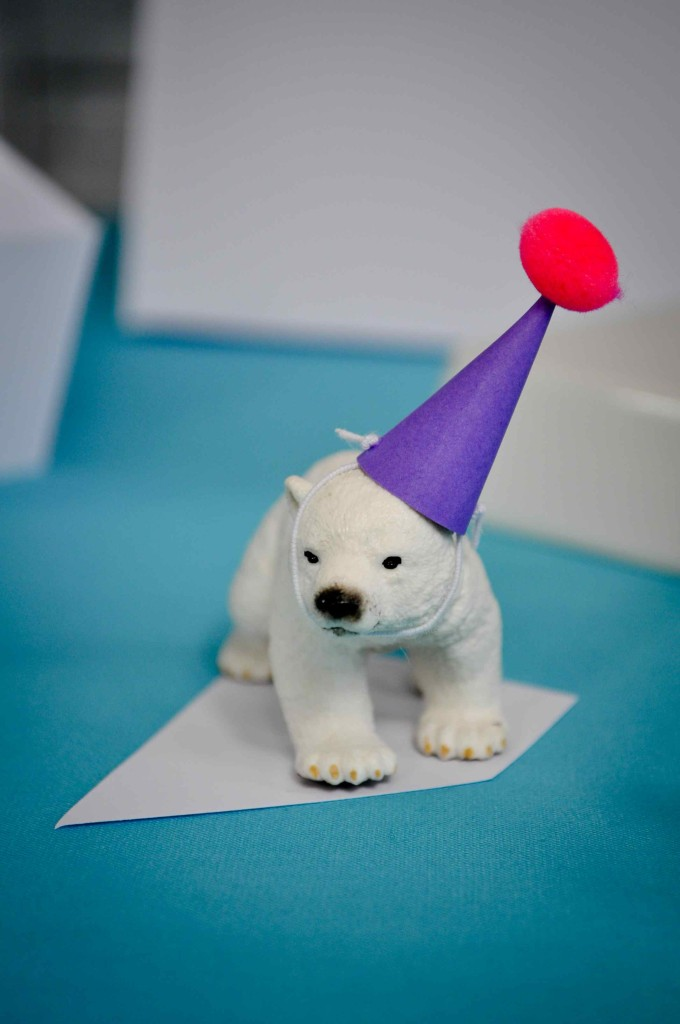 décoration animaux polaire