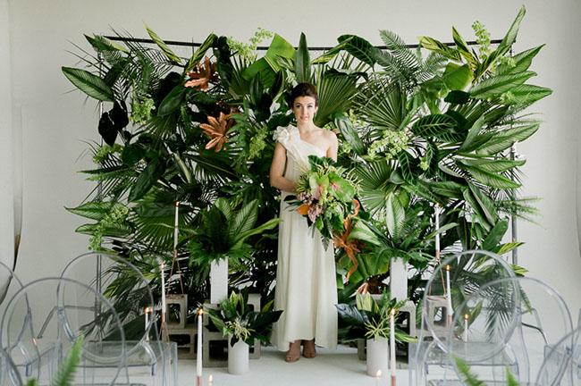 mur tropical jungle