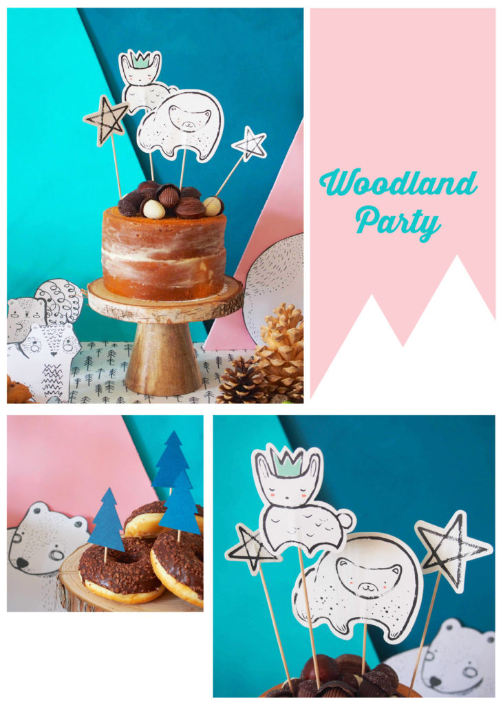 cake-topper-animaux