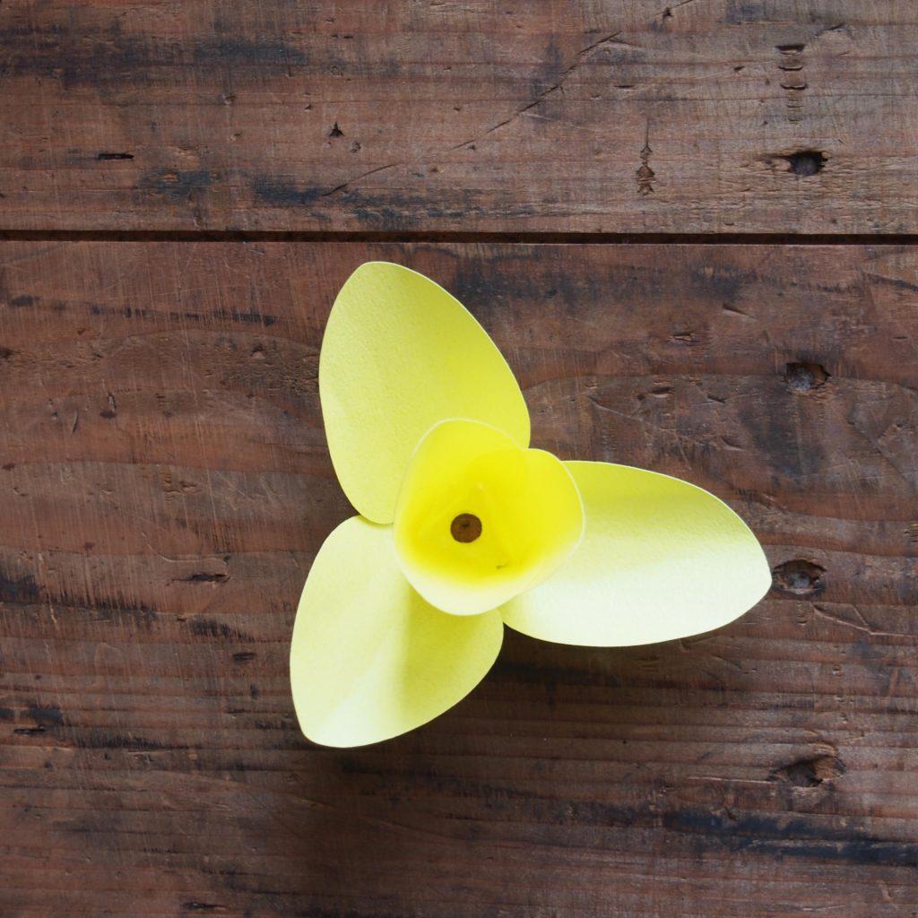 tulipe papier deco printemps