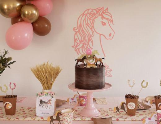 déco anniversaire thème cheval